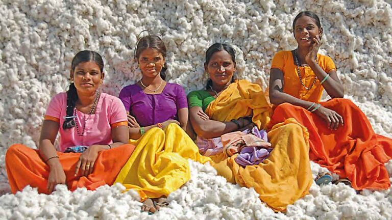 Four smiling Indian women sittin in a pile of harvested cotton buds.